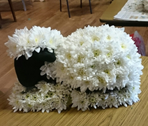 Chrysanthemum Sheep