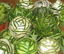 Foliage spheres