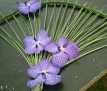 Fan weave